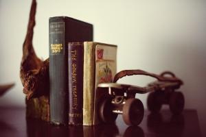 book-shelf-349947_1280